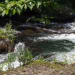 Bild 13. Das Wasser hat eine schöne Farbe.