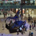 Bild 21. Es gibt ein Dinosaurierskelett,...