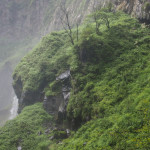 Bild 21. Im Detail sieht der begraste Stein aus wie ein Planet.