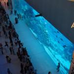 Bild 22. ...ein Aquarium...