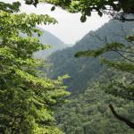 Bild 26. In entgegengesetzter Richtung des Wasserfalls.