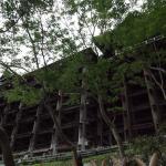 Bild 10. Die Stützen des Kiyomizudera.