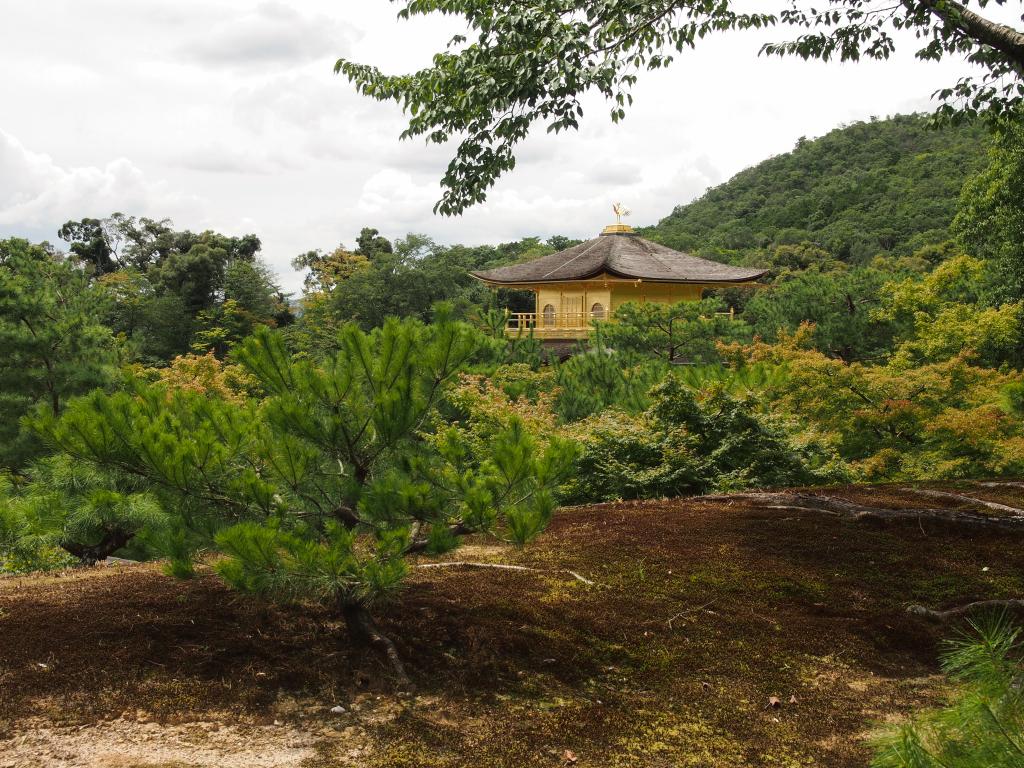 Bild 15. Der Kinkaku-ji eingebettet in sein natürliches Umfeld.