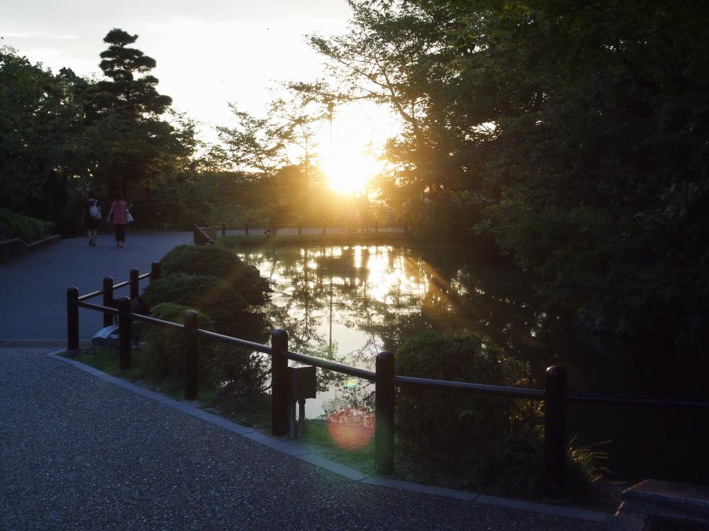 Bild 23. Auch der Teich bleibt davon nicht unberührt.
