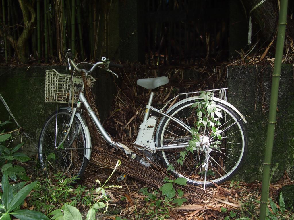 Bild 25. Oh. Ein Fahrrad...
